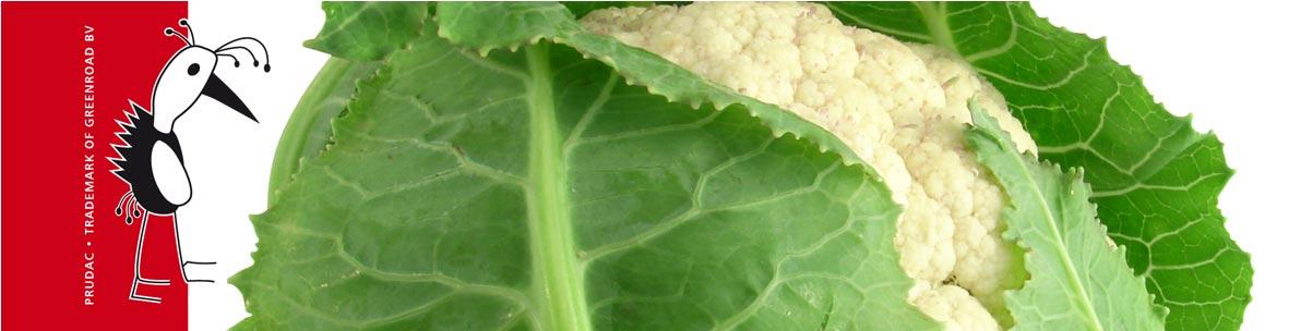 Cauliflower PRU